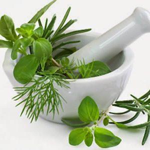homeopathy_home